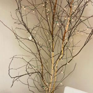 Twinkly tree in Hastings lobby