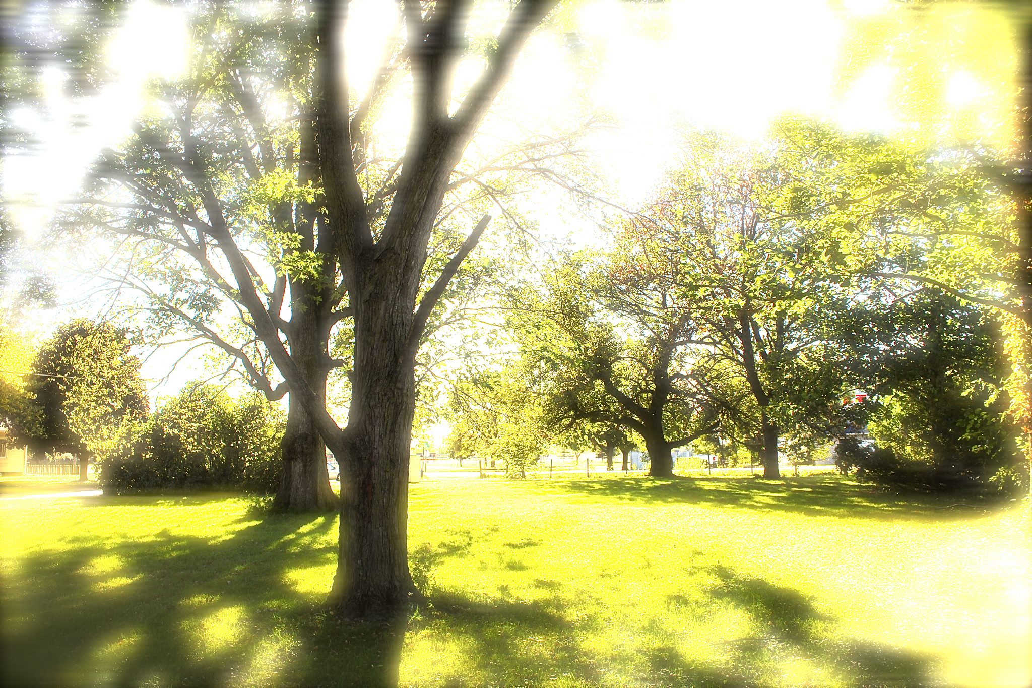 Front yard at Hope Tree in Waterloo, IA.